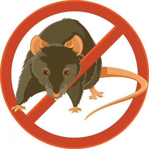 Preventing Rodents on Your Property